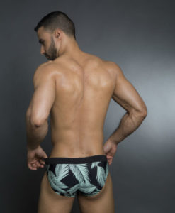 Classic Briefs Swimwear, Swimsuit With A Stretched Band Great Prints For Summer At The Pool and Beach.