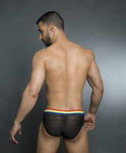 Rainbow_Black_Mesh_Briefs_Undies017B