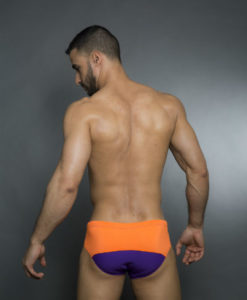 Wide Speedo Cut - Swim Briefs With 2 Colors On The Back. Great For The Beach Or Pool In The Summer